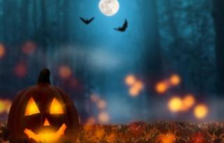 BULGARİSTAN & ROMANYA Cadılar Bayramına Özel Tur