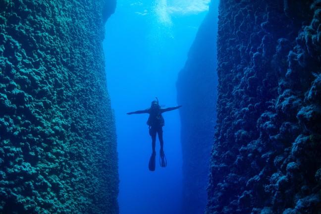 Sertifikalı Dalgıçlar için Dalış - Certified Divers